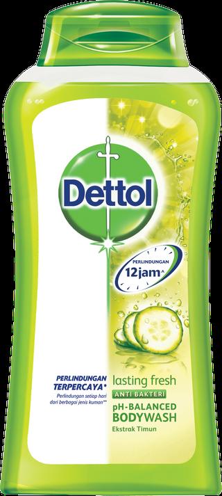 Sabun Cair Anti Bakteri Dettol Lasting Fresh (300ml)